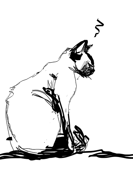 Sulking cat